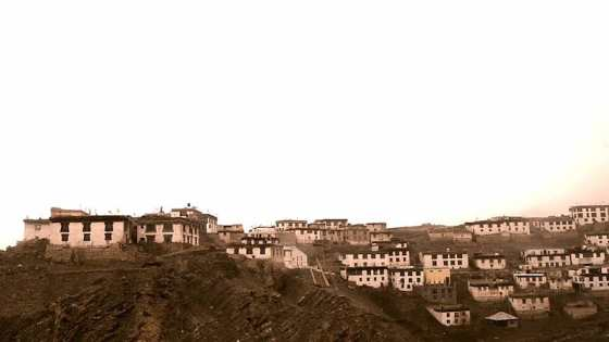 Kibber (Spiti, Himachal)